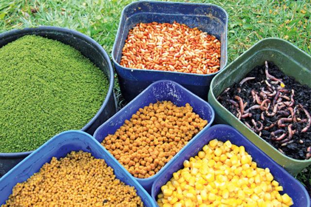 Это кукуруза, перловка, зерна пшеницы, червь, опарыш