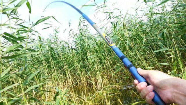 Ранней весной на пруду специалисты советуют использовать приманки животного происхождения