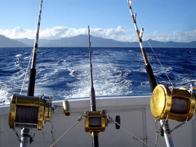 Так как рыба держится недалеко от берега, ловить можно без лодки