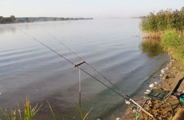 Донка на карася, вернее, её принципиальная схема, схожа с донными оснастками для ловли других рыб