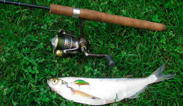 Класс удилища. Для этой рыбалки лучше использовать легкий или сверхлегкий классы
