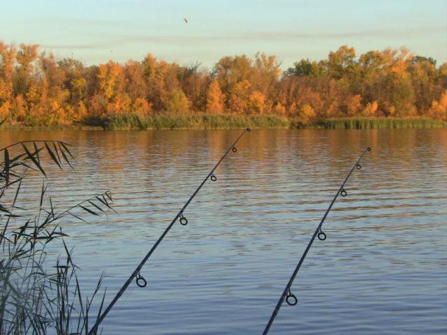 Особенности игры приманки на мягком поводке из лески могут спровоцировать на поклевку даже пассивную рыбу