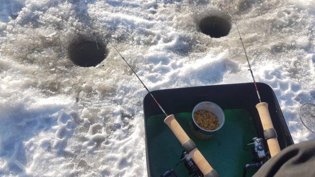 Мотыль является универсальной зимней насадкой, потому, как рыба не берет никаких других наживок