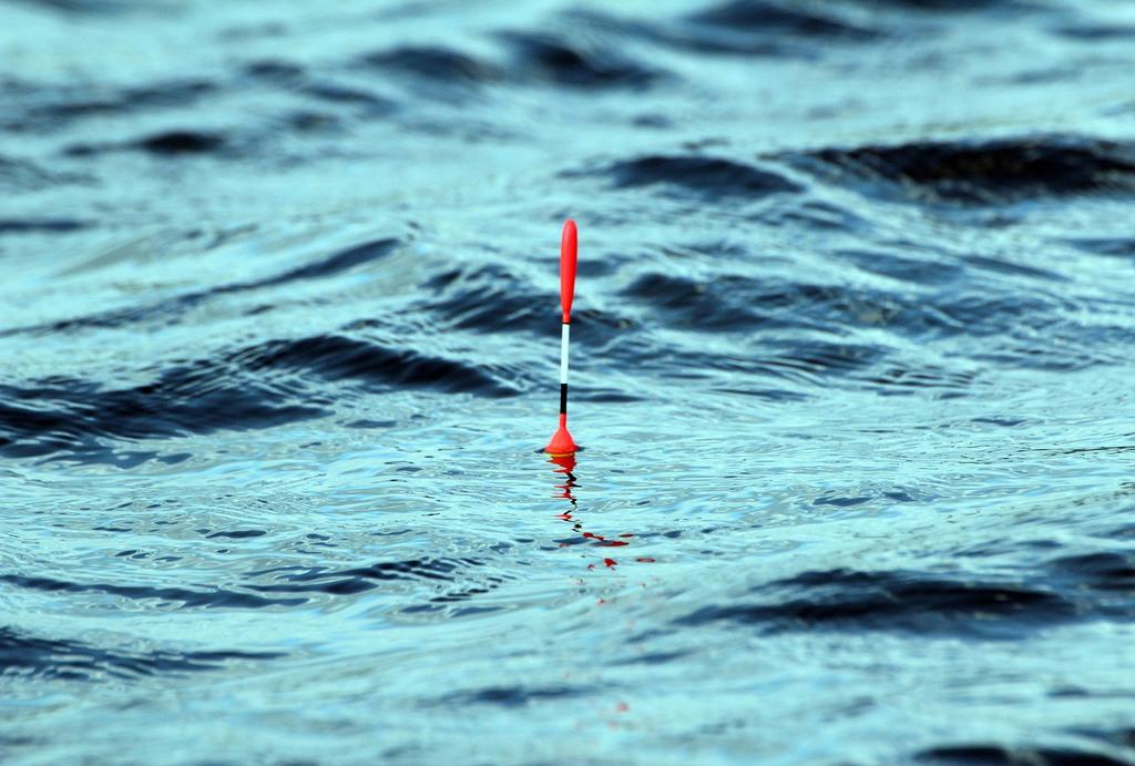 Виды поплавков для рыбалки и строение элемента