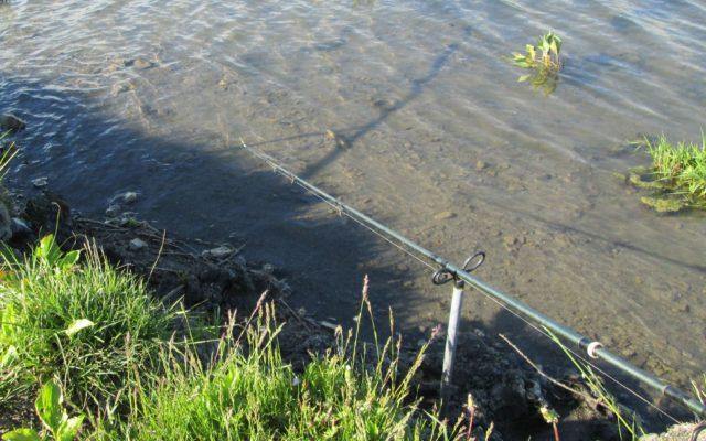 При определенных навыках им можно ловить на реке любую рыбу