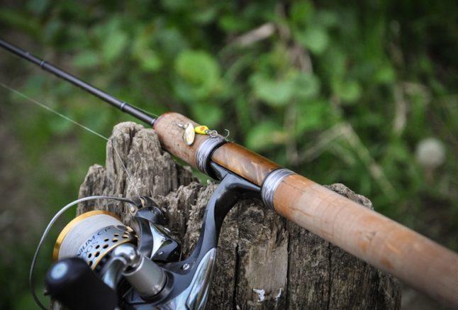 В любом случае удилище должно иметь быстрый или сверхбыстрый строй, так как оно сможет лучше сопротивляться рывковым нагрузкам при вываживании трофея