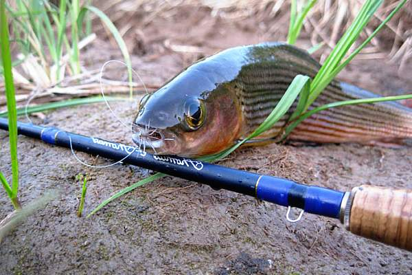 При использовании такого снаряжения рыбак должен уметь выполнять правильные забросы