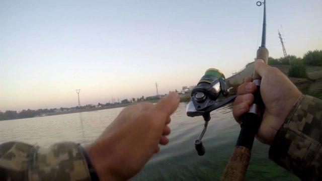 На данный момент сбирулино используется как отдельная рыбацкая снасть