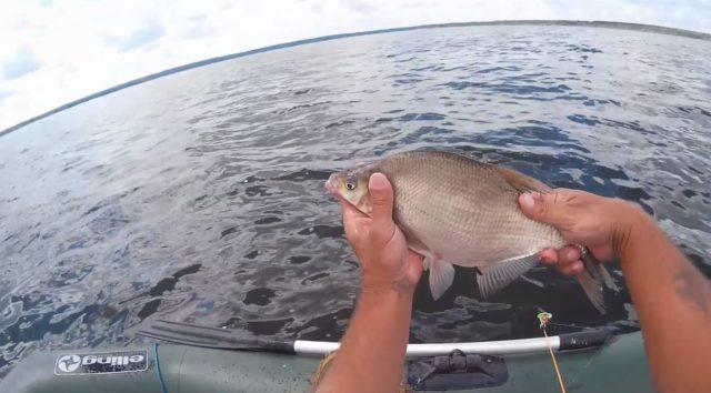 Как ловить с лодки на кольцо — Здесь рыба