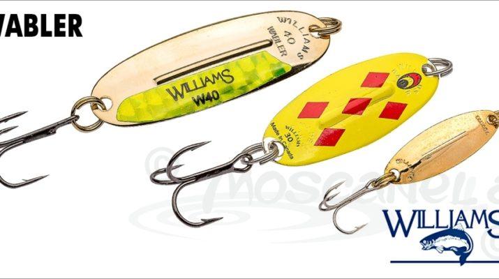 Блесна - Вильямс - (Williams) на судака, на форель, преимущества, модельный ряд, цены, отзывы