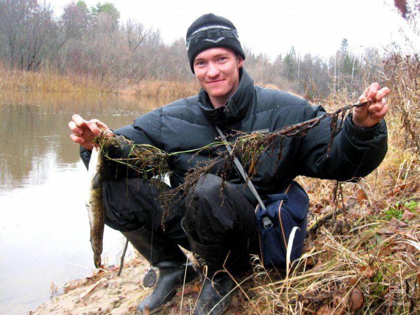 Ловля налима осенью на закидушку